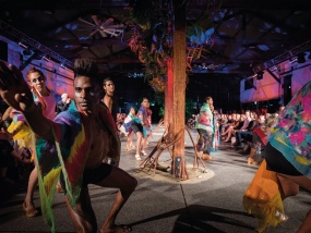 Art & Culture in Cooktown