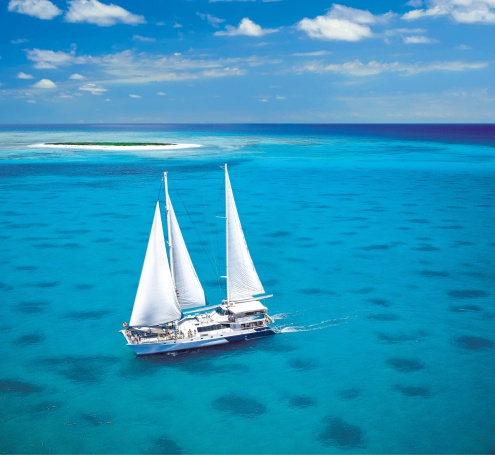 Day 1: Ocean Spirit Michaelmas Cay Cruise